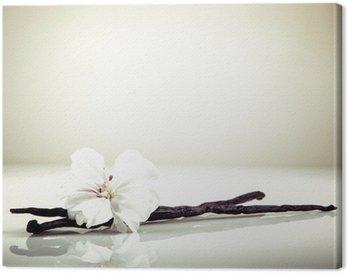 Obraz na Płótnie Wanilia i kwiat