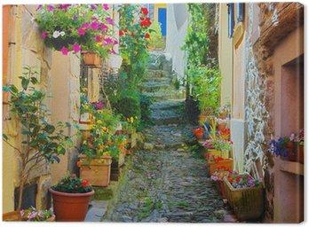 Obraz na Płótnie Wąskie i kolorowe ulicy we wsi w Prowansji