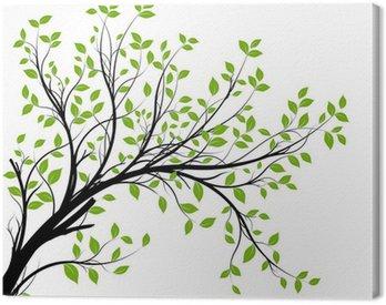 Obraz na Płótnie Wektor zestaw - zielony gałęzi i liści dekoracyjne