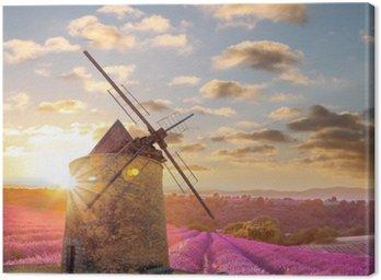 Obraz na Płótnie Wiatrak z Levander polu przeciwko kolorowe słońca w Provence, Francja