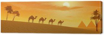 Obraz na Płótnie Wielbłądy na pustyni