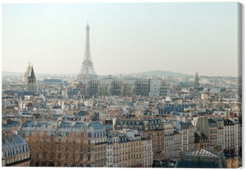 Obraz na Płótnie Wieża Eiffla i dachy Paryża