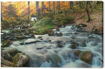 Obraz na Płótnie Wodospad las