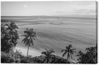 Wybrzeżu tropikalnej wyspie. Czarno-białe zdjęcie.