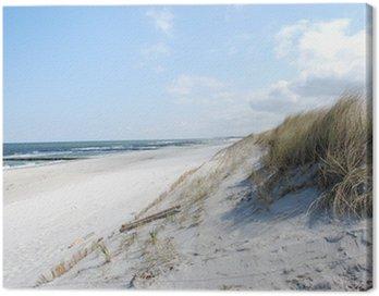 Obraz na Płótnie Wydma plaży