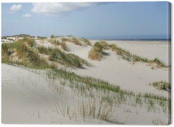 Obraz na Płótnie Wydmy na wybrzeżu Holandii