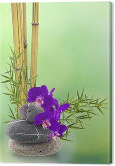 Obraz na Płótnie Wystrój ikebana, Orchidee, bambusa, Galet