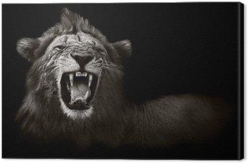 Obraz na Płótnie Wyświetlanie niebezpiecznych zębów lwa
