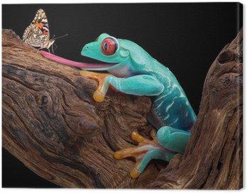 Żaba próbuje złapać motyla