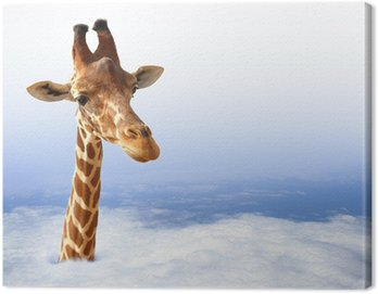 Obraz na Płótnie Zabawna żyrafa z wychodzi z chmury