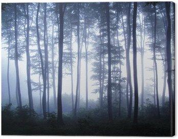 Obraz na Płótnie Zachód słońca w lesie z mgły