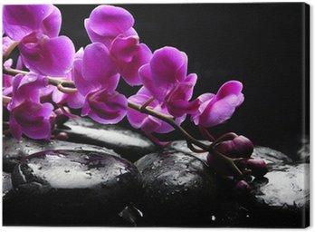 Obraz na Płótnie ZEN Stone i różowa orchidea z refleksji