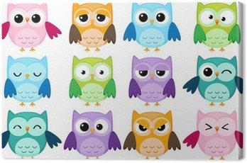 Obraz na Płótnie Zestaw 12 kreskówek sowy z różnych emocji