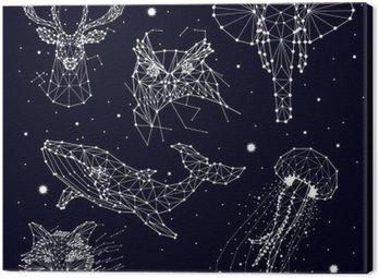 Zestaw konstelacji, słonia, Sowa, jelenie, wieloryby, meduzy, Fox, gwiazda, grafiki wektorowej