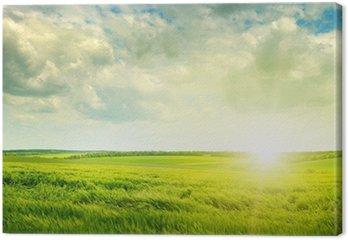 Obraz na Płótnie Zielone pola i świt