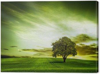 Obraz na Płótnie Zielony charakter