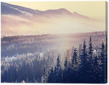 Obraz na Płótnie Zima góry