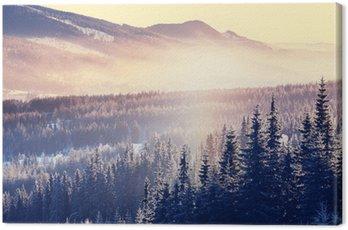 Zima góry