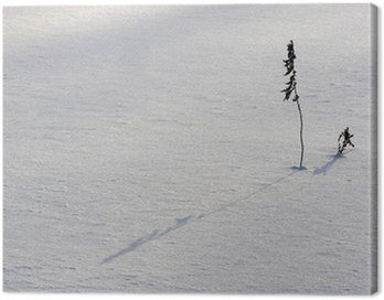 Obraz na Płótnie Zima ikebana