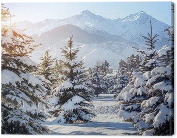 Obraz na Płótnie Zimowy krajobraz górski
