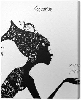 Obraz na Płótnie Zodiaku wodnik znak. dziewczyna mody