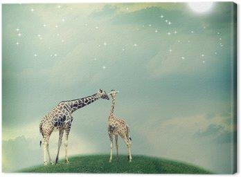 Obraz na Płótnie Żyrafy w przyjaźni lub miłości koncepcji obrazu