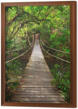 Obraz v Rámu Bridge do džungle, Národní park Khao Yai, Thajsko