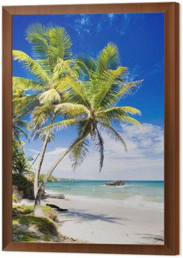 Obraz v Rámu Cumana Bay, Trinidad
