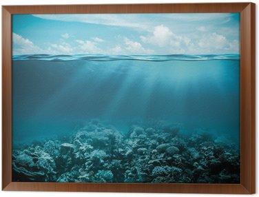 Obraz v Rámu Moře nebo oceán pod vodou hluboké přírodní pozadí