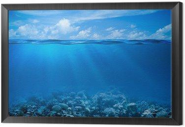 Obraz v Rámu Podvodní korálový útes mořského dna pohled s obzorem a vodní plochy