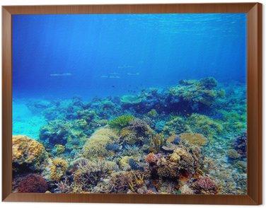 Obraz v Rámu Podvodní scény. Korálový útes, barevné ryby a slunečné oblohy shinin