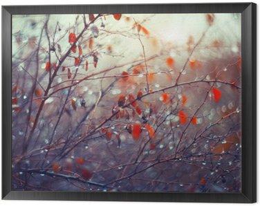 Obraz v Rámu Pozadí s větvemi a dešťové kapky