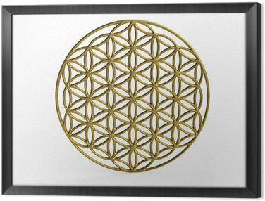 Obraz v Rámu Sakrální symbol Květ života ve 3D