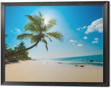 Obraz v Rámu Tropical Beach