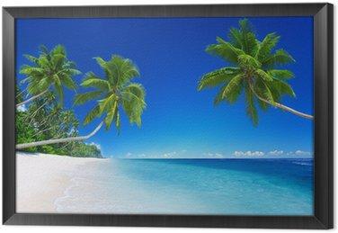 Obraz v Rámu Tropický ráj