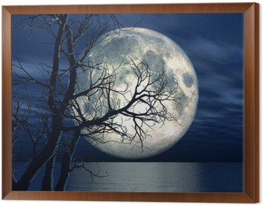 Obraz w Ramie 3d tle krajobraz z księżyca i drzewa