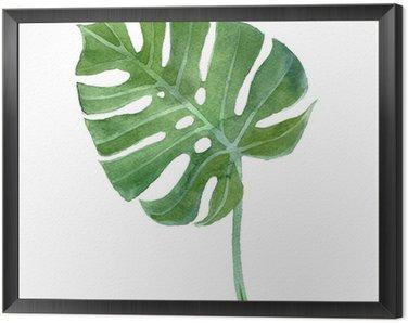 Obraz w Ramie Akwarela monstera liści