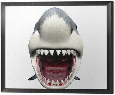 Obraz w Ramie Atak rekina
