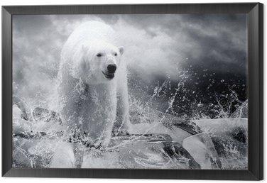 Obraz w Ramie Biały niedźwiedź polarny Hunter na lodzie w kropli wody.