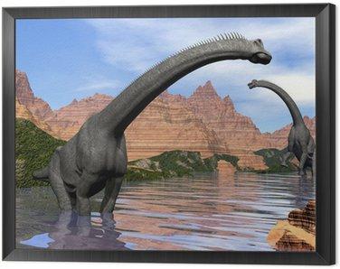Obraz w Ramie Brachiosaurus dinozaury w wodzie - 3d render