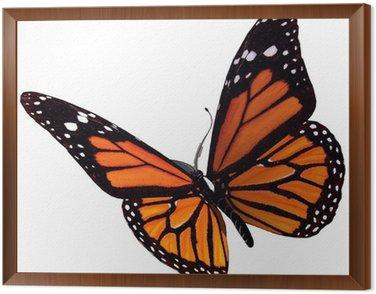 Bullterfly