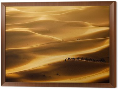 Obraz w Ramie Camel caravan