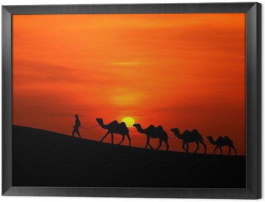 Obraz w Ramie Camel Sillhouette karawana z zachodem słońca