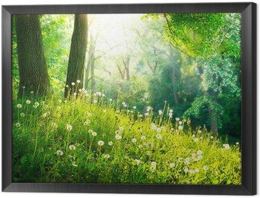 Obraz w Ramie Charakter wiosny. piękny krajobraz. zielona trawa i drzew