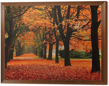 Obraz w Ramie Czerwony jesienią w parku