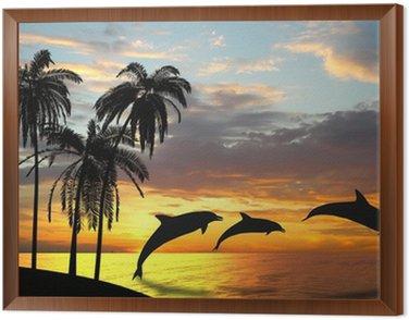 Obraz w Ramie Delfiny w pobliżu Hawajów