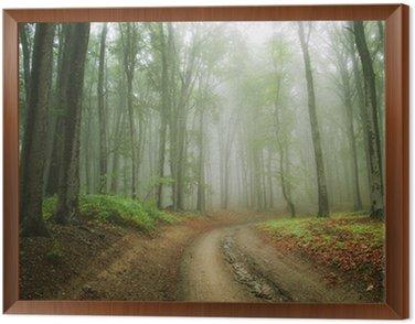 Obraz w Ramie Droga w korycie lesie mgła