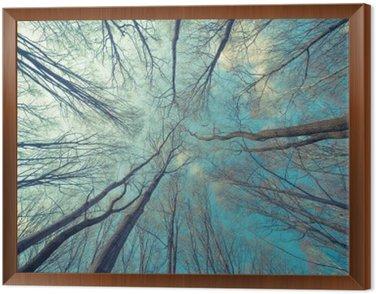 Obraz w Ramie Drzewa Web Tło