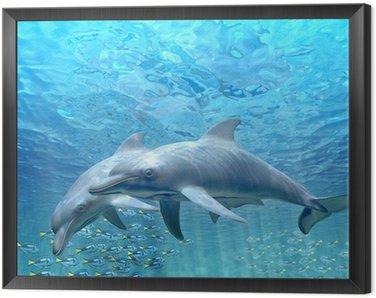Obraz w Ramie Hi res Delfiny pod wodą