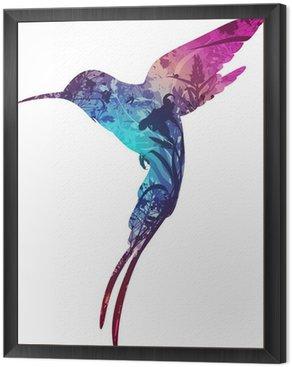 Obraz w Ramie Humming bird